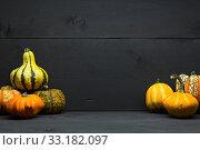 Купить «various pumpkins with dark wood background», фото № 33182097, снято 5 июля 2020 г. (c) PantherMedia / Фотобанк Лори