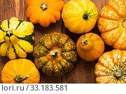 Купить «pumpkins on wood background - thanksgiving,thanksgiving,halloween», фото № 33183581, снято 5 июля 2020 г. (c) PantherMedia / Фотобанк Лори