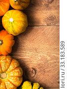 Купить «pumpkins on wood background - thanksgiving,thanksgiving,halloween», фото № 33183589, снято 5 июля 2020 г. (c) PantherMedia / Фотобанк Лори