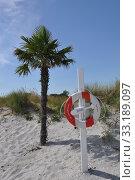 Купить «palm tree,sandy beach,ambulance,first aid,palm beaches frederikshavn», фото № 33189097, снято 26 мая 2020 г. (c) PantherMedia / Фотобанк Лори