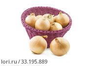 raw onions,isolated. Стоковое фото, фотограф Harald Biebel / PantherMedia / Фотобанк Лори