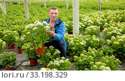 Купить «Positive man farmer working with Hydrangea plants while gardening in glasshouse», видеоролик № 33198329, снято 26 апреля 2019 г. (c) Яков Филимонов / Фотобанк Лори