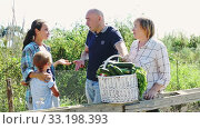 Portrait of positive couple of gardeners with son standing in garden near wooden fence with gathered vegetables and talking with mature woman about rich harvest. Стоковое видео, видеограф Яков Филимонов / Фотобанк Лори