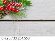 Christmas decoration of holly springs. Стоковое фото, фотограф Tomas Anderson / PantherMedia / Фотобанк Лори