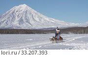 Female mushing sled dog team, running snow distance Sled Dog Race Championship. Редакционное видео, видеограф А. А. Пирагис / Фотобанк Лори