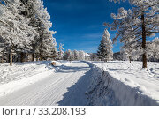 Купить «View of a winter road with trees covered with frost on a Sunny day in the Altai mountains, Western Siberia, Russia», фото № 33208193, снято 27 января 2020 г. (c) Наталья Волкова / Фотобанк Лори