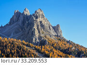 North face of the mountain Cadini di Misurina in autumn / fall in the Sesto / Sexten Dolomites, Belluno, South Tyrol, Italy, October. Стоковое фото, фотограф Philippe Clement / Nature Picture Library / Фотобанк Лори