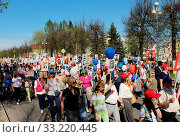Parade immortal regiment on the Victory Day May 9, 2016. Gatchina, Leningrad region, Russia. Стоковое фото, фотограф Zoonar.com/Olga Ovchinnikova / easy Fotostock / Фотобанк Лори