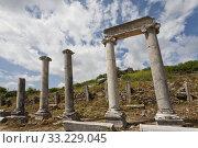 Columns and Header in Historic Perga. Стоковое фото, фотограф Scott Griessel / PantherMedia / Фотобанк Лори