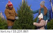 Купить «happy family buying christmas tree at market», видеоролик № 33231861, снято 6 января 2020 г. (c) Syda Productions / Фотобанк Лори
