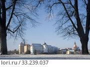 castle hartenfels in winter. Стоковое фото, фотограф Bernd Blume / PantherMedia / Фотобанк Лори