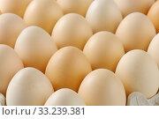 fresh eggs in a tray. Стоковое фото, фотограф Alena Dvorakova / PantherMedia / Фотобанк Лори