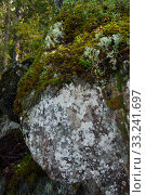 Купить «Mossy rock in forest, russia, karelia», фото № 33241697, снято 14 сентября 2019 г. (c) Короленко Елена / Фотобанк Лори