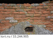 Купить «old farmhouse,agriculture,gate,window,tinsting,garsten,ruin,brick», фото № 33244905, снято 26 мая 2020 г. (c) PantherMedia / Фотобанк Лори