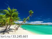 Купить «Beach with palm trees over the lagoon on Fiji Islands», фото № 33245661, снято 4 апреля 2020 г. (c) PantherMedia / Фотобанк Лори
