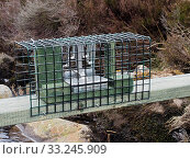 Купить «New legal type Doc Trap set across stream on Grouse Moor targeted to trap Stoat for the protection of ground nesting birds, Upper Teesdale, Co Durham, England, UK, March», фото № 33245909, снято 4 августа 2020 г. (c) Nature Picture Library / Фотобанк Лори