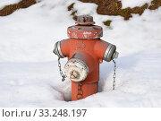Купить «fire hydrant,fire department,water hydrant», фото № 33248197, снято 26 мая 2020 г. (c) PantherMedia / Фотобанк Лори