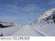 Ski slope,cross-country ski run,Staller Sattel,East Tyrol,hiking trail,road,pass road,trail. Стоковое фото, фотограф Thomas Riegler / PantherMedia / Фотобанк Лори