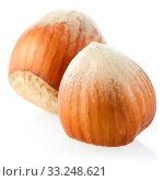 Three hazelnuts. Стоковое фото, фотограф Carlos Santos / PantherMedia / Фотобанк Лори