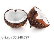 Купить «Coconut isolated on white.», фото № 33248797, снято 12 июля 2020 г. (c) PantherMedia / Фотобанк Лори