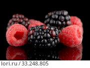 Купить «Blackberry and raspberry», фото № 33248805, снято 5 апреля 2020 г. (c) PantherMedia / Фотобанк Лори