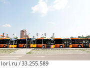 New modern busses for public transportation are shown in a row from the front in a parking lot. Стоковое фото, фотограф Zoonar.com/Cylonphoto / age Fotostock / Фотобанк Лори