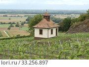 Hueglinsbergkapelle, Kaiserstuhl. Стоковое фото, фотограф Manfred Ruckszio / PantherMedia / Фотобанк Лори