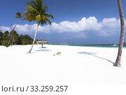 Купить «Maldives Island in Lhaviyani Atoll», фото № 33259257, снято 5 июля 2020 г. (c) PantherMedia / Фотобанк Лори