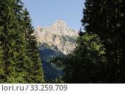Bergspitze Rot-Flüh. Стоковое фото, фотограф Siegfried Kopp / PantherMedia / Фотобанк Лори
