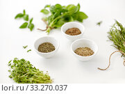 Купить «fresh and dry seasoning on white background», фото № 33270037, снято 12 июля 2018 г. (c) Syda Productions / Фотобанк Лори
