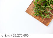 Купить «bunch of fresh peppermint on wooden cutting board», фото № 33270605, снято 12 июля 2018 г. (c) Syda Productions / Фотобанк Лори