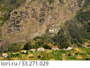 Hillside village, Madeira. Стоковое фото, фотограф Edwin Giesbers / Nature Picture Library / Фотобанк Лори