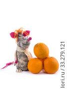 Купить «Крыса - мягкая игрушка из валяной шерсти на белом фоне», фото № 33279121, снято 29 февраля 2020 г. (c) V.Ivantsov / Фотобанк Лори