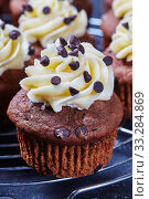Купить «Chocolate cupcake on a metal rack, close-up», фото № 33284869, снято 9 января 2020 г. (c) Oksana Zh / Фотобанк Лори