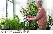 Купить «happy senior woman spraying houseplants at home», видеоролик № 33286049, снято 19 января 2020 г. (c) Syda Productions / Фотобанк Лори