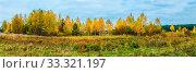 Купить «Panorama. Lonely beautiful autumn tree. Autumn Landscape. Panorama», фото № 33321197, снято 13 июля 2020 г. (c) age Fotostock / Фотобанк Лори