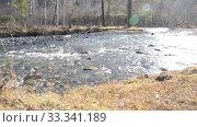 Купить «Dolly slider shot of the splashing water in a mountain river near forest. Wet rocks and sun rays. Horizontal steady movement. Raw flat colors.», видеоролик № 33341189, снято 9 сентября 2018 г. (c) Александр Маркин / Фотобанк Лори