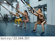 Купить «Group of women doing exercise in gym, back view», фото № 33344301, снято 13 декабря 2019 г. (c) Tryapitsyn Sergiy / Фотобанк Лори