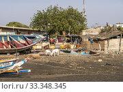 Купить «Missirah, Sine Saloum Delta, Senegal, Westafrika | Missirah, Sine Saloum Delta, Senegal, West Africa,.», фото № 33348345, снято 9 января 2020 г. (c) age Fotostock / Фотобанк Лори