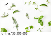 Купить «greens, spices or herbs on white background», фото № 33355653, снято 12 июля 2018 г. (c) Syda Productions / Фотобанк Лори