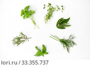 Купить «greens, spices or herbs on white background», фото № 33355737, снято 12 июля 2018 г. (c) Syda Productions / Фотобанк Лори