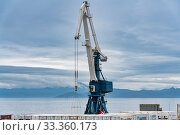 Купить «Harbor gantry-crane and many containers for shipping sea storage at terminal in sea port on coast of Pacific Ocean», фото № 33360173, снято 27 августа 2019 г. (c) А. А. Пирагис / Фотобанк Лори
