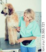 Купить «woman hairdresser cuts Afghan puppy Shepherd in beauty salon for animals», фото № 33360721, снято 17 октября 2017 г. (c) Татьяна Яцевич / Фотобанк Лори