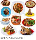 Купить «Collection of mutton meals», фото № 33365593, снято 29 мая 2020 г. (c) Яков Филимонов / Фотобанк Лори