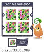Купить «Spot the difference mosaic», иллюстрация № 33365989 (c) Седых Алена / Фотобанк Лори