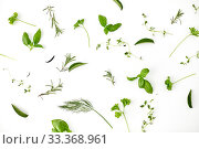 Купить «greens, spices or herbs on white background», фото № 33368961, снято 12 июля 2018 г. (c) Syda Productions / Фотобанк Лори
