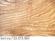 Фон натуральной древесины. Стоковое фото, фотограф Наталья Гармашева / Фотобанк Лори