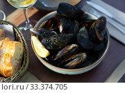 Купить «Steamed mussels with green sauce», фото № 33374705, снято 6 июля 2020 г. (c) Яков Филимонов / Фотобанк Лори