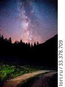 Купить «Milky way clear at night, silhouettes of trees», фото № 33378709, снято 12 июля 2020 г. (c) easy Fotostock / Фотобанк Лори
