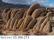 Deeply weathered granite boulders below the snow covered Sierra Nevada Mountains, in the Alabama Hills, California, USA, November. Стоковое фото, фотограф John Shaw / Nature Picture Library / Фотобанк Лори